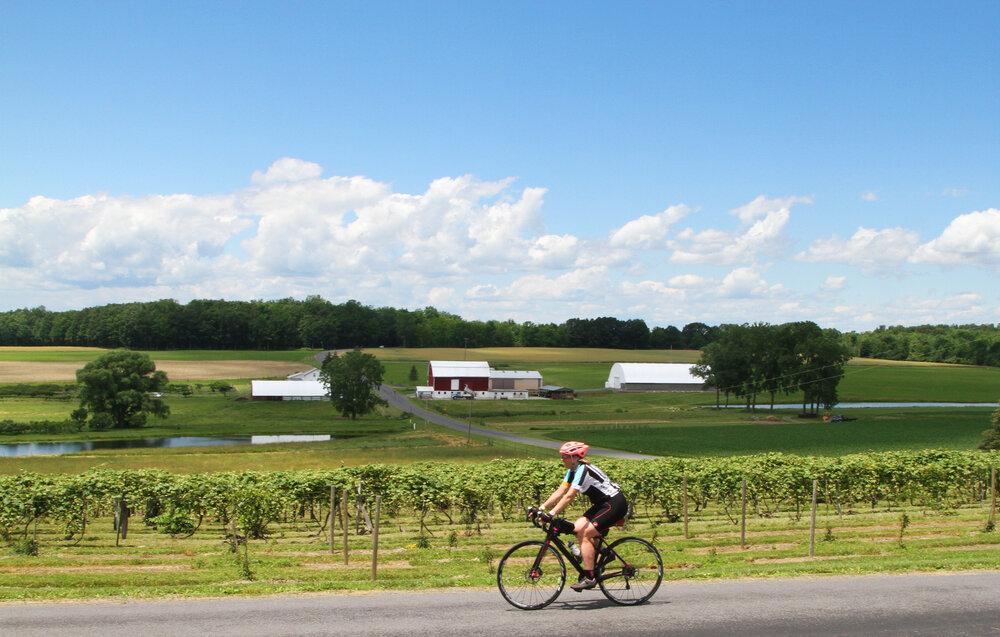 Lake Champlain Islands Biking